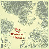 From The Witchwood de The Strawbs
