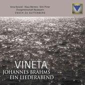 Brahms: Vineta by Enoch Zu Guttenberg
