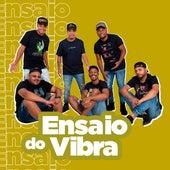 Ensaio do Vibra, Vol. 2 de Grupo Vibração