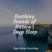 Soothing Sounds of Nature | Deep Sleep by Sleepy Times