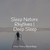 Sleep Nature Rhythms | Deep Sleep de Study Music