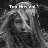 Top Hits Vol 1 by Various Artists