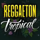 Reggaeton Tropical de Various Artists