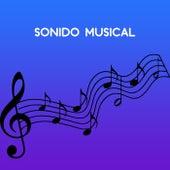 Sonido Musical de Various Artists