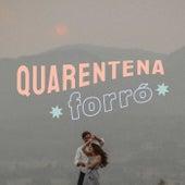 Quarentena Forró fra Various Artists