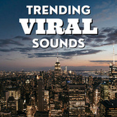 Trending Viral Sounds by Various Artists