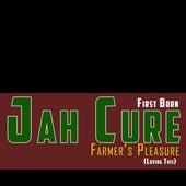 Farmers Pleasure (Loving This) by Jah Cure