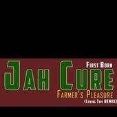 Farmer's Pleasure (Loving This) (Remix) by Jah Cure