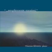 … Semplicemente emozioni von Vincenzo Silvestris