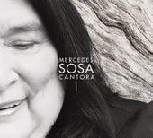 Cantora de Mercedes Sosa