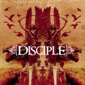 Disciple de Disciple