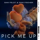 Pick Me Up by Sam Feldt