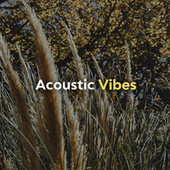 Acoustic Vibes van Various Artists