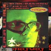 Magpie (Nia Archives Remix) by Lava La Rue