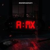 Amx (Remix) de Fer Palacio