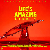 Life's Amazing Riddim by Various Artists