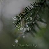 Walk With Me | Deep Sleep by Sleepy Times