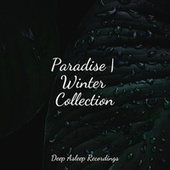 Paradise | Winter Collection de Ambient Music Therapy