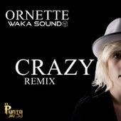 Crazy Remix de Waka Sound