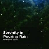 Serenity in Pouring Rain fra Rain Drops For Sleep
