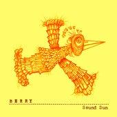 Sound Sun van Berry