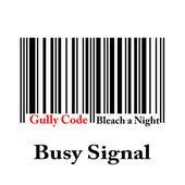 Gully Code (Bleach a Night) by Busy Signal