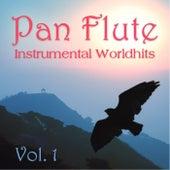 Instrumental Worldhits Vol. 1 de Pan Flute