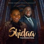 Shidaa (Thanksgiving) by Yvonne Asamoah-Tawiah