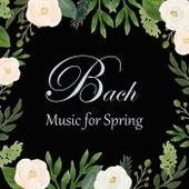 Bach - Music for Spring by Johann Sebastian Bach