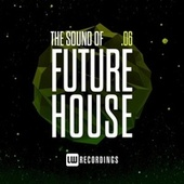 The Sound Of Future House, Vol. 06 by Various Artists