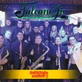 La Historia Musical 1 de Falconí Jr. La Grande del Ecuador