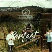Perfect (Guitarra, Corneta Y Trompeta) by La Música del Gato