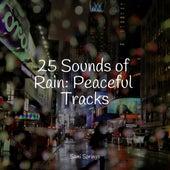 25 Sounds of Rain: Peaceful Tracks de Study Music