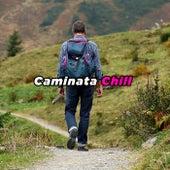 Caminata Chill de Various Artists