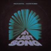 My Last Song by Felix Cartal