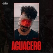 Aguacero (Freestyle) by Malo