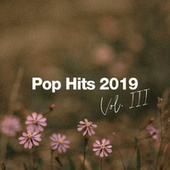 Pop Hits 2019 Vol. III fra Various Artists