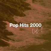 Pop Hits 2000 Vol. 1 von Various Artists