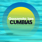Gozando Las Cumbias by Various Artists
