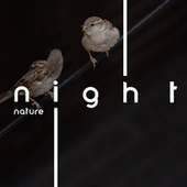 Night Nature - Fall Asleep with Therapeutic Sounds of Raindrops, Water and Birds, Insomnia Relief, Music for Restful Sleep by Deep Sleep Hypnosis Masters
