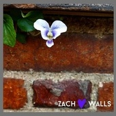 Walls by Zach