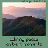 Calming Peace Ambient Moments by Relaxing Chill Out Music