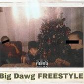 Big Dawg FREESTYLE von Paign