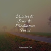 Winter & Sounds   Meditation Focus by Relaxing Spa Music