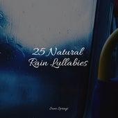 25 Natural Rain Lullabies de Sonido De Lluvia