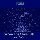 When the Stars Fall by Kaia