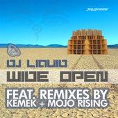 Wide Open by DJ Liquid
