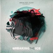 Breaking The Ice LP de Various Artists