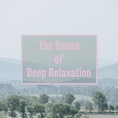 The Sound of Deep Relaxation de Massage Tribe