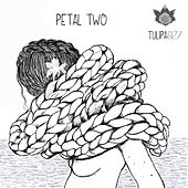 Petal Two by Various Artists